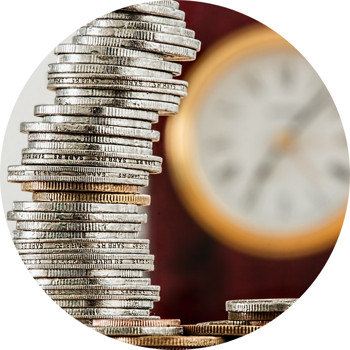increase financial visibility - CocoonIt Services